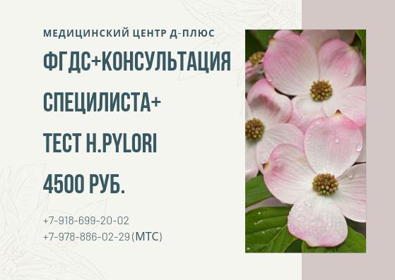 ФГДС + консультация специалиста + тест H.pylori — 4500 руб